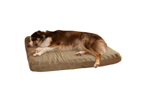 PAW Orthopedic Super Foam Pet Bed, Large